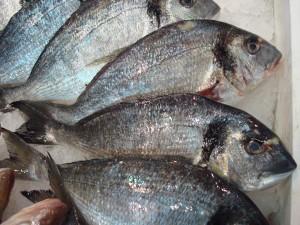 Transglutaminase kan ok visstukjes aanelkaar plakken tot een grote vis als het moet. Deze Dorades behoeven niet geplakt te worden, gewoon opbakken en dan merk je dat dit een van de meest smakelijke visjes is.