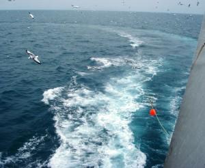 De Noordzee ziet er iets blauwer uit dan het water van de Zuid Chinese zee en omgeving.