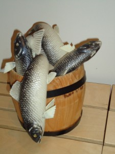 Op iedere vis zit wel eens een vreemde schub, luidt een Urker gezegde. Haring kan onderling sterk van smaak verschillen. Dat maakt een Nationale Haring test tot een grote sensorische uitdaging.