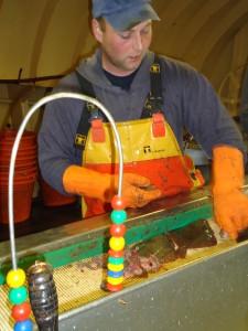 Er worden lange dagen gemaakt op een viskotter, zoals hier op de PD43, de Annegina.  Tussendoor reinigen en desinfecteren zoals omschreven in het ISO 22.000 kwaliteitshandboek vormt een extra taakverzwaring.
