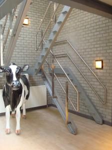 Deze Friese koe heeft meer verstand van voedselveiligheid dan Rob