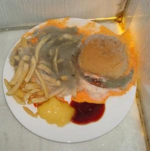Wij hebben een hamburger met patat écht laten bederven zoals het hoort. Binnen 14 dagen bij 40 graden en 100RV lukt het heel fraai. Consumptie wordt afgeraden.