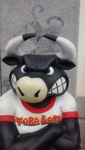 Deze Spaanse stier symboliseert het ideale profiel van de NVWA. Op en top bewapend, strenge blik in de ogen en toch vriendelijk gekleed