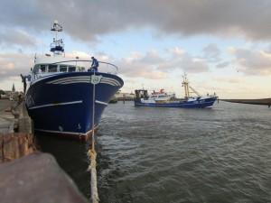 Harlingen 9 juli 2015 om 21.00uur. De PD 147 is zojuist aangemeerd met zusterschip de Annegina  eerbiedig op de  achtergrond. De laatste visserij van Jan. Stijlvol en mooi moment